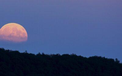 Full Moon Super Moon